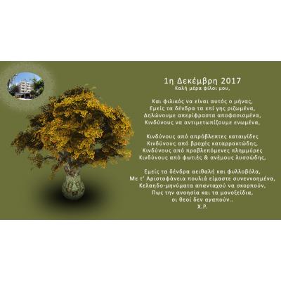 Δεκέμβρης 2017, Δένδρα
