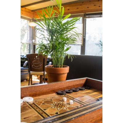 Cafe Bar photos